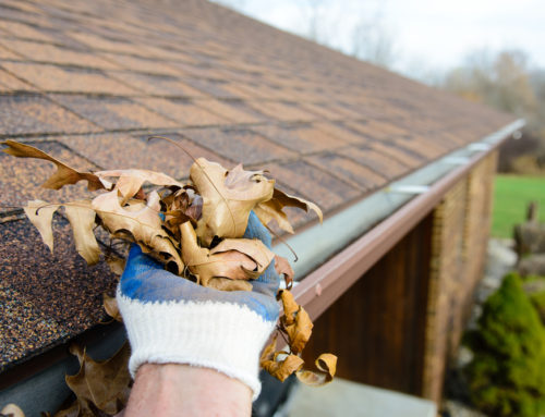 Gutter Cleaning: Having Clean Gutters Prevents Water Damage
