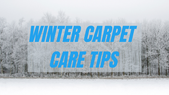 Grand Rapids Winter Carpet Care Tips Top Care Cleaning
